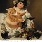 Cat2016_306x426-09